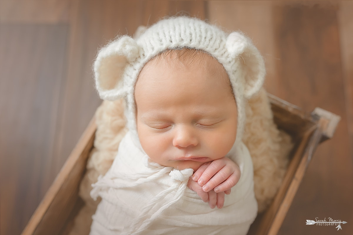 Newborn portrait of baby posed in wooden box with teddy bear bonnet by memphis newborn photographer